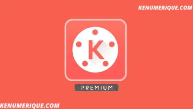 Télécharger Kinemaster Premium APK